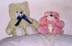 teddy-pinkie.jpg