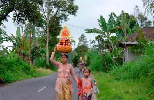 Bali 377