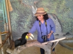 With the hornbill