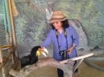 With the hornbill