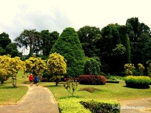 1-botanical garden 6