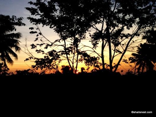 1-sunrise 2