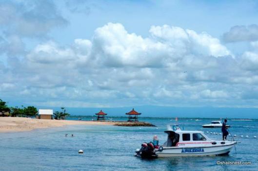 Bali 478